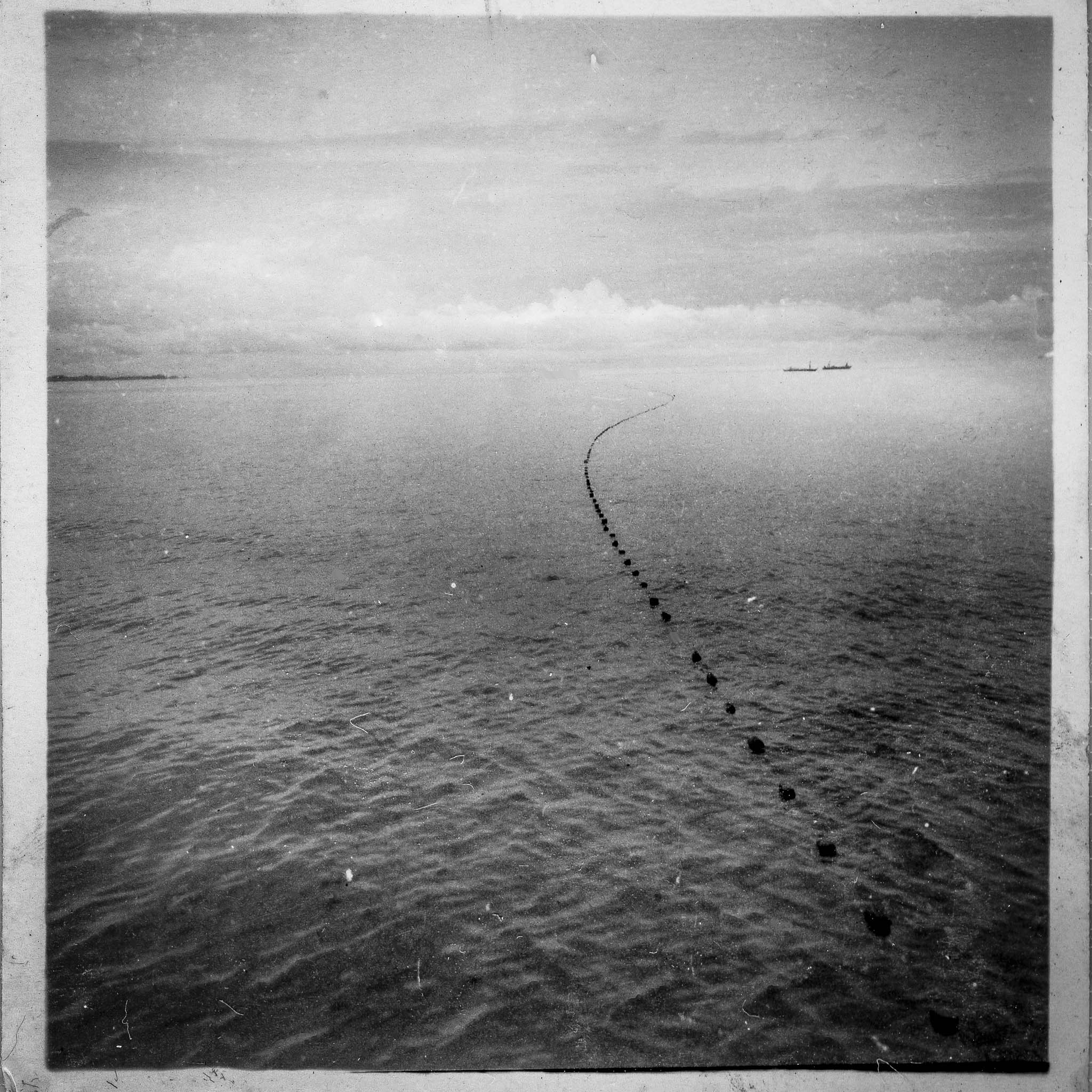 Teo's Island Album-17